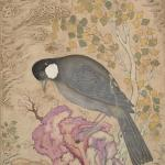 Mu'in Musavvir, White-Eared Bulbul Perched on a Pink Rock, 1676, Safavid, Yale University Art Gallery